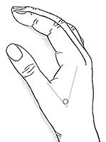 dikke darm hand.jpg